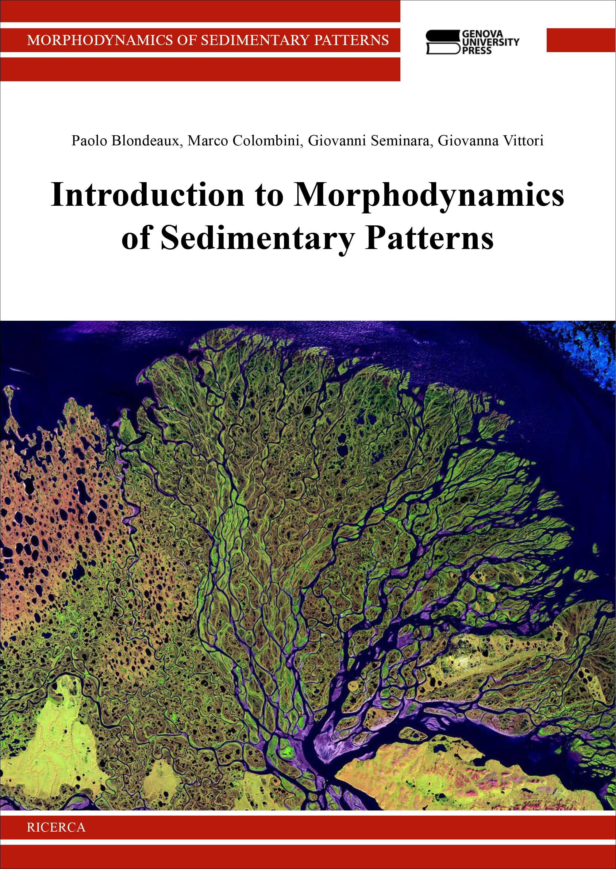 Introduction to Morphodynamics of Sedimentary Patterns - copertina